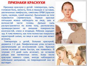 Симптомы краснухи