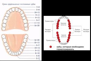Признаки прорезания зубов