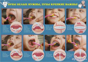 Во сколько лет приучить ребенка чистить зубы
