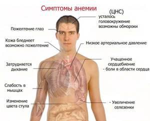 Как питаться при повышенном гемоглабине